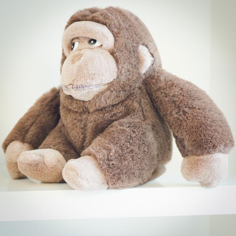 Kieferorthopaedie Aguero - Gorilla Zahnspange